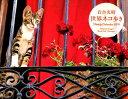 岩合光昭世界ネコ歩きWeekly Calendar 2019 /クレヴィス/岩合光昭